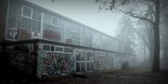 Der Schöninger Volkspark im Nebel